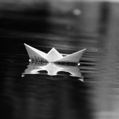 rains photography