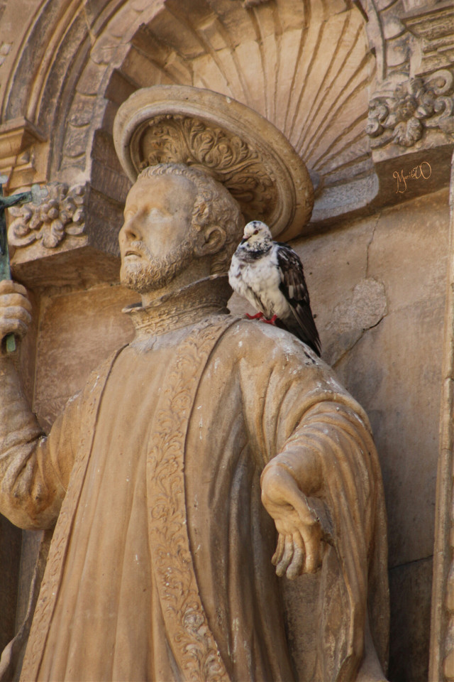 Good night dear friends.  #petsandanimals#stilllife #statue #photography #travel #architecture #shorttriptomallorca