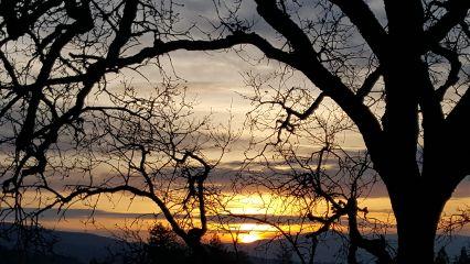 travel sunrise spring