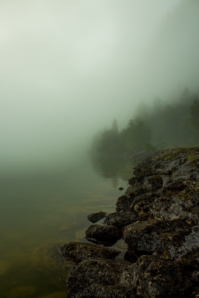 Mist on lake  #landscapephotography #interesting #fog #mist #lake #freetoedit