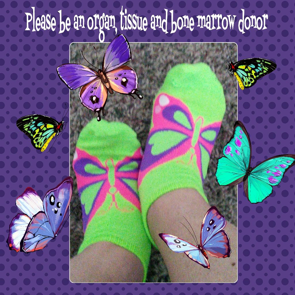 """""""Float like a butterfly sting like a bee – his hands can't hit what his eyes can't see."""" Muhammad Ali  #dialysissocks #butterflysocks #dialysis #socks #butterfly #funsocks #sockfun #sockselfie #sockoftheday #socksofInstagram #sockgame #sockconisseure #pleasebeanorgandonor"""