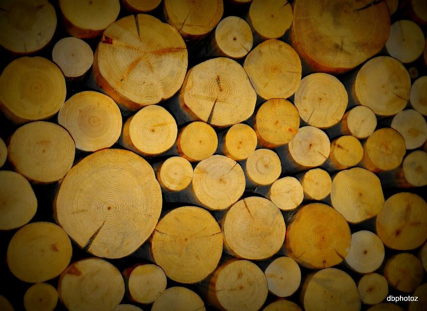 #logs.