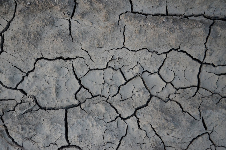 Pixabay (Public Domain) #FreeToEdit #texture #earth #background #texture #cracked #old #dry