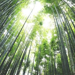 nature photography instagram sky japan Tokyo kamakura