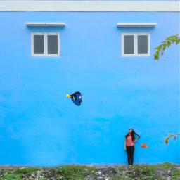 minimalism minimalis minimalist blue wall