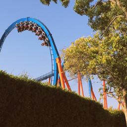 rollercoaster fun summer lifestyle