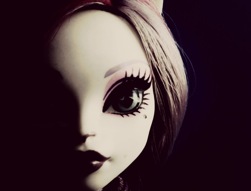 #monsterhigh #cat #doll #scary