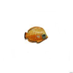 freetoedit minimalism fish simple