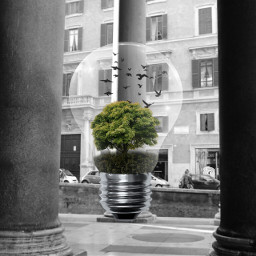 roma blackandwhite columns clipart lamp_art