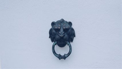 freetoedit lion head background blackandwhite