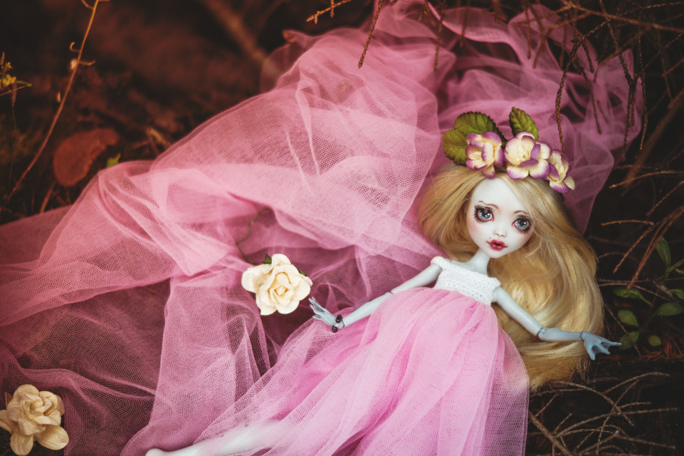 #Pretty #pink #monster high #ooak #colorful #flower #nature #summer