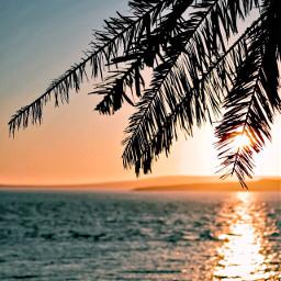 interesting beach southafrica capetown sunset freetoedit