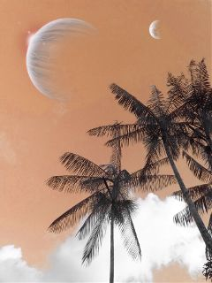look_up photography orange sky moon freetoedit