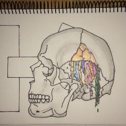 art twentyonepilots drawing