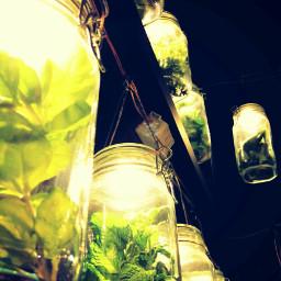 green light glass