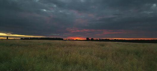 sunrise countryside