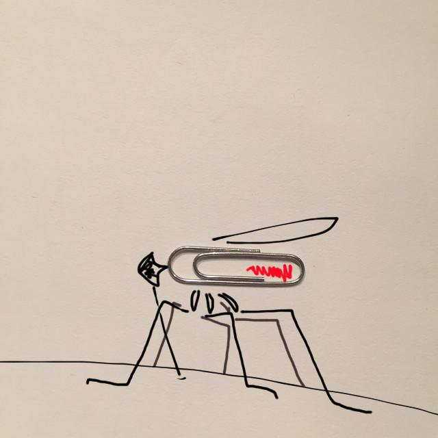 Mosquito…
