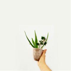 freetoedit photography minimalism objects lifestyle