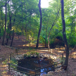 eden myplace mothernature nature freetoedit