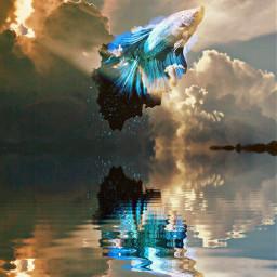 edited mirror lake