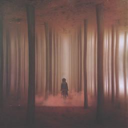 nature people edited surreal fog