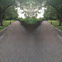 picturesarebae paths yourchoice freetoedit