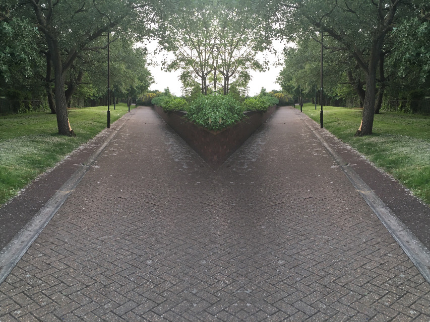 Which path do you pick? #picturesarebae #paths #yourchoice #FreeToEdit