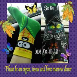 dialysis corn socks butterflies paisley