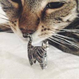 cat mypet miniature tinyart sculpture