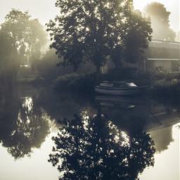 sunrise netherlands dodgereffect misty tree