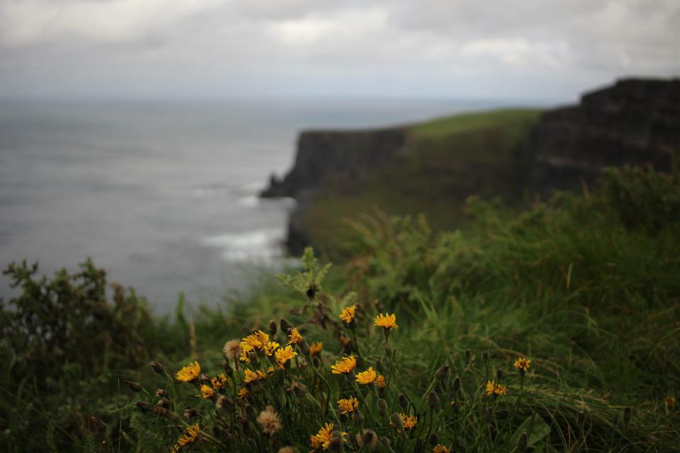 #cliffsofmoher #ireland