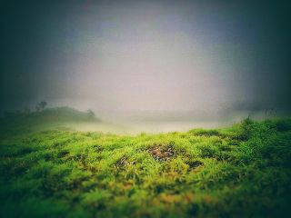 freetoedit vagamon nature