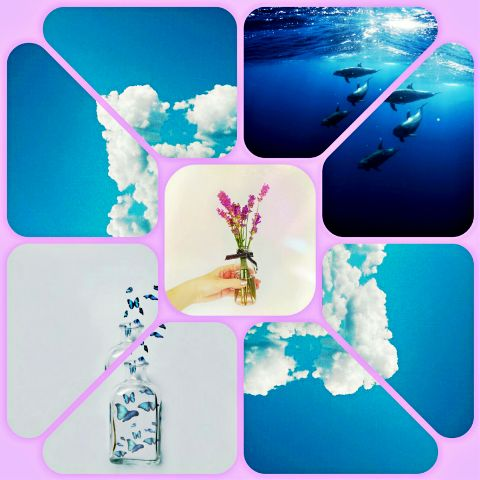 #collage,#colorful,#ocean,#flower